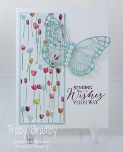 butterfly soft sky