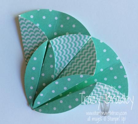 dahlia fold 5