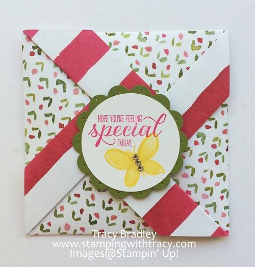 Feeling Special Pinwheel Card