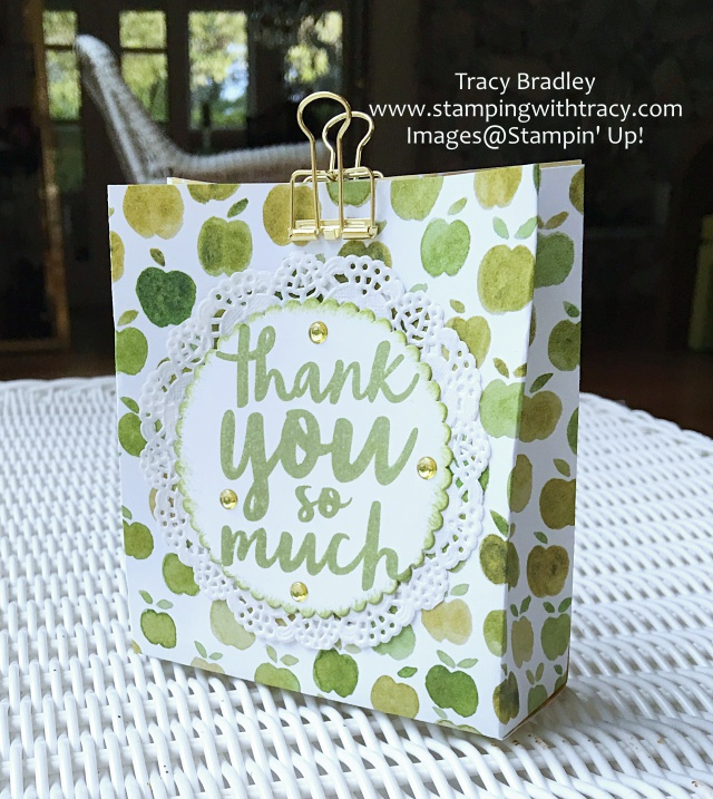 gift-bag-using-stampin-up-fruit-stand-paper