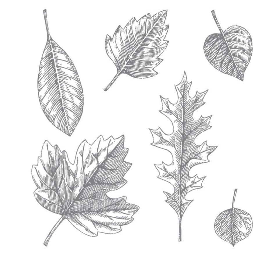 vintage-leaves
