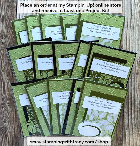 Tracy's Project Kits