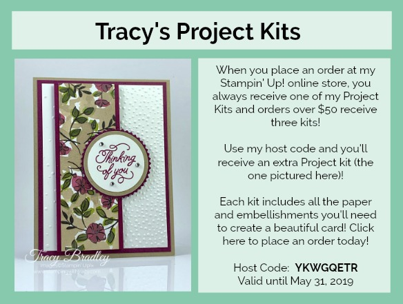 Tracy's Project Kits