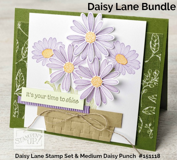 Daisy Lane Bundle