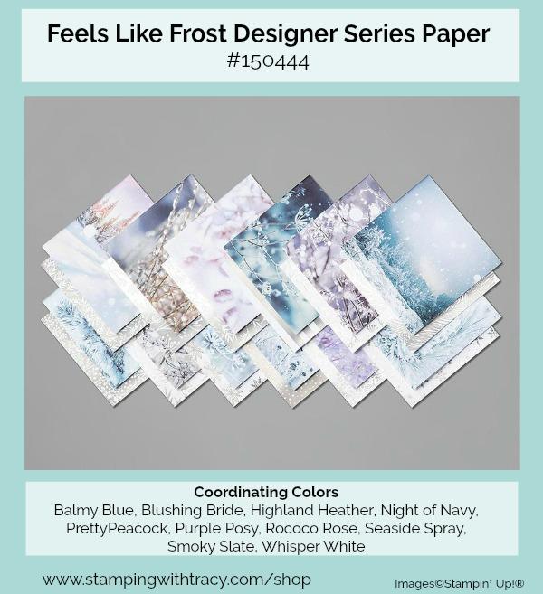 Feels Like Frost Designer Series Paper