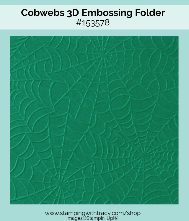 Cobwebs 3D Embossing Folder Stampin Up
