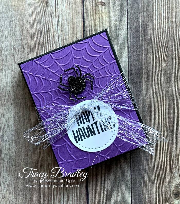 Cobwebs Embossing Folder
