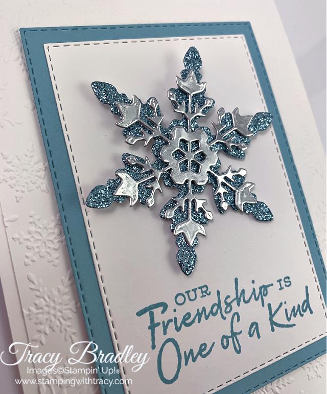 Winter Snow Embossing Folder