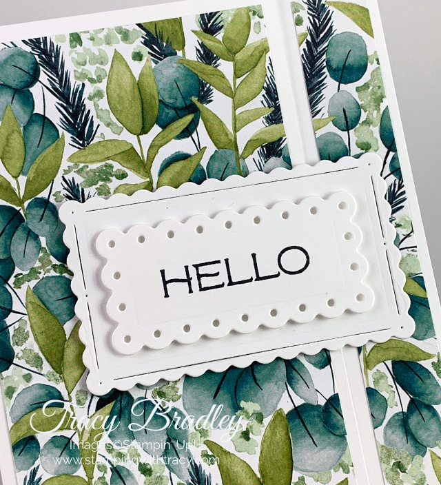Scalloped Contours Dies Stampin Up