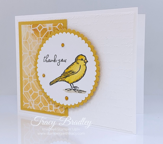 Free as a Bird Stampin Up