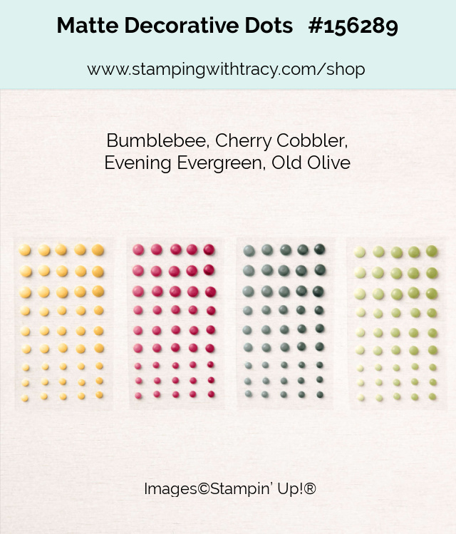 Matte Decorative Dots Stampin Up