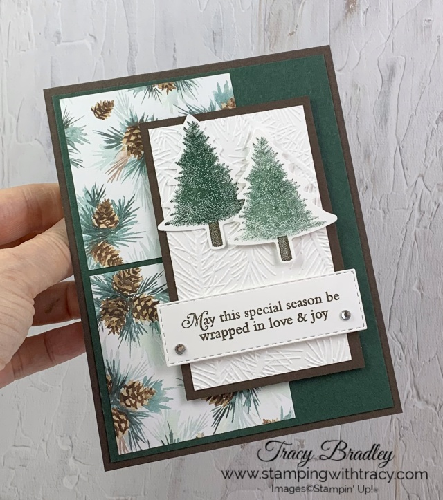 Painted Christmas Designer Series Paper